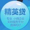 大重庆精英信用贷款(精英贷)